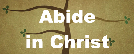 Abide In Christ Image